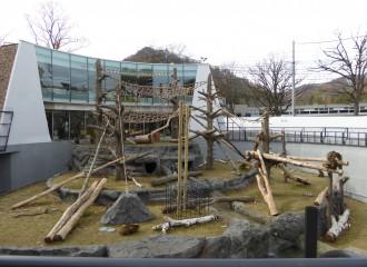 札幌市 円山動物園 サル山 ネット