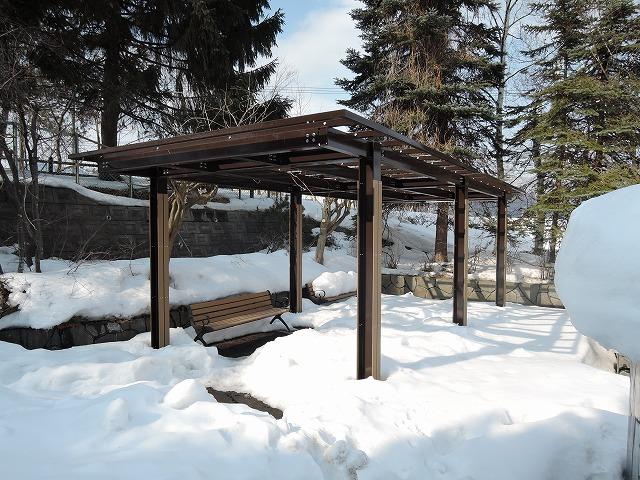 冬の公園1